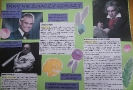 Plakat ucznia SP 17 z Oddziałami Integracyjnymi w Rzeszowie